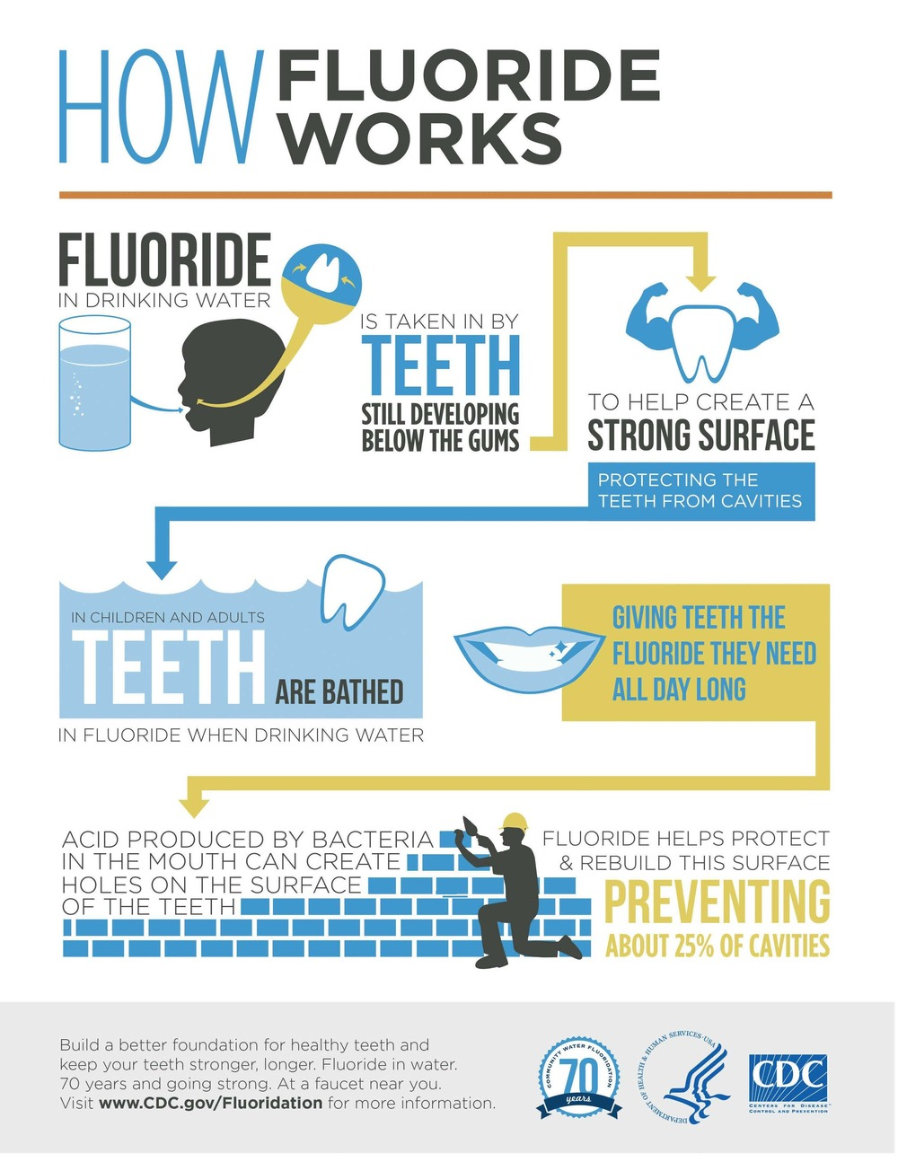 fluoride-infographic-how-it-works.jpg