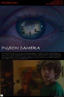 pigeon camera.jpg