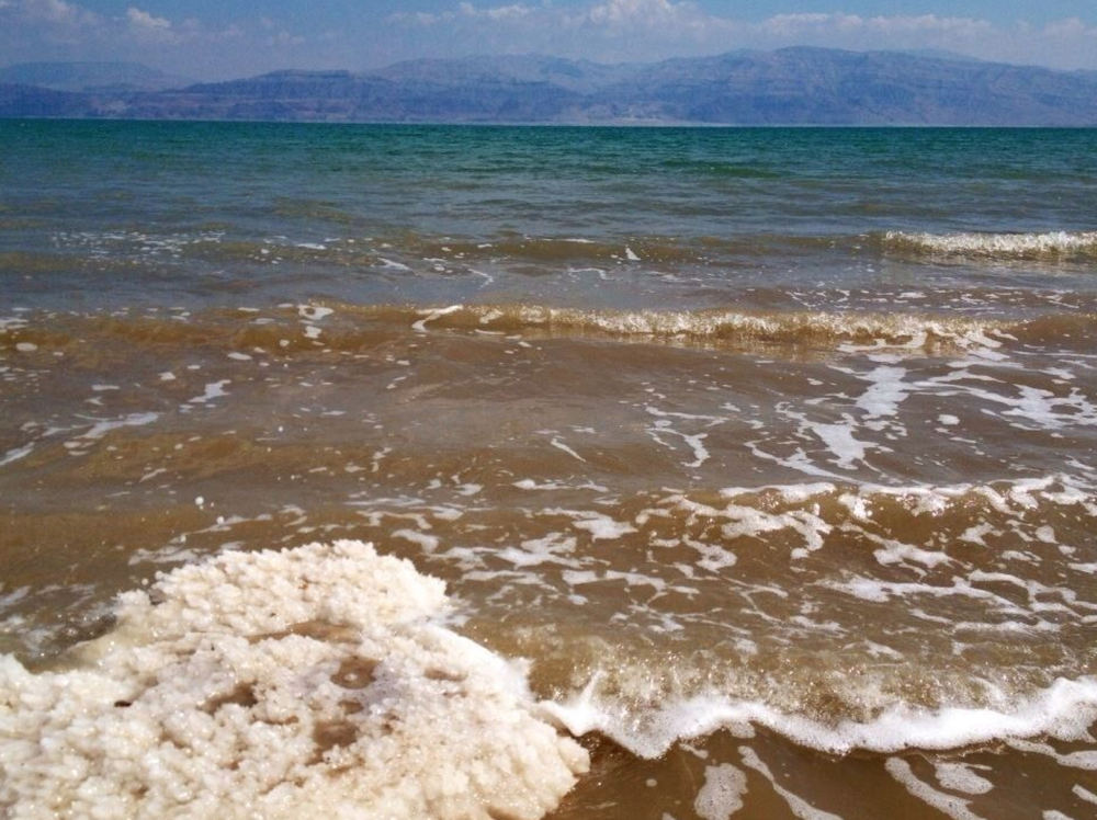 DEAD SEA | VERED BACK