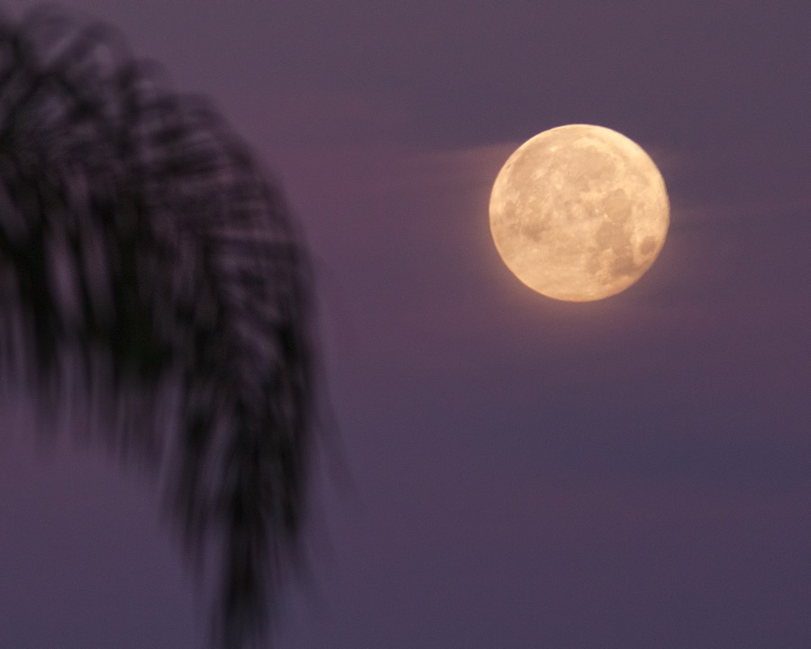full_moon_purple_sky_sm.jpg