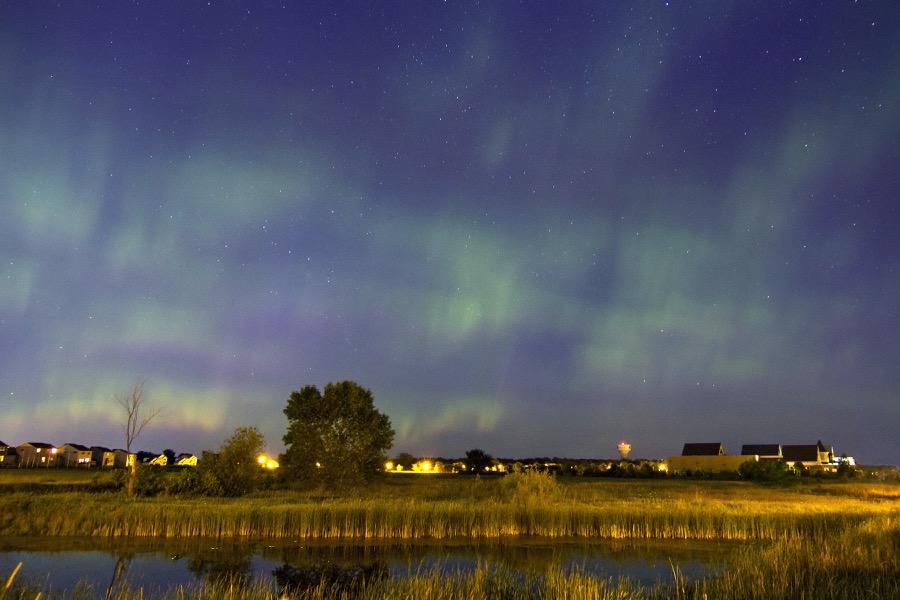 fireflies_auroras_sm.jpg