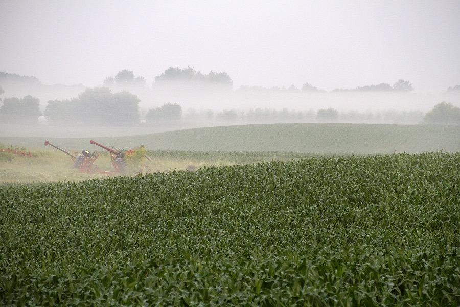 foggy_field_farm_implements_sm.jpg