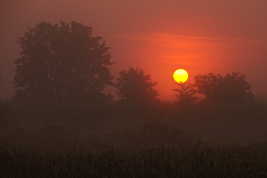 red_sunrise_landscape_sm.jpg