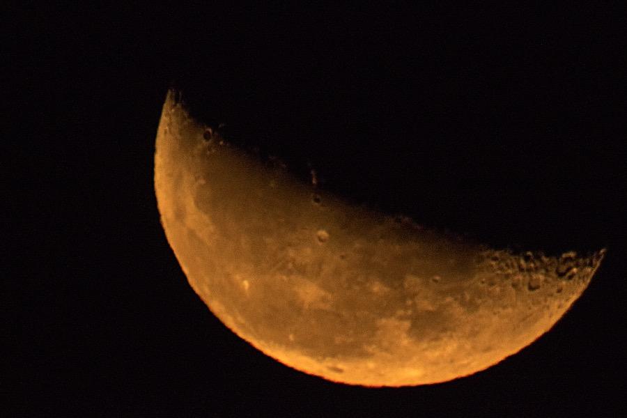 orange_half_moon_8x12_sm.jpg
