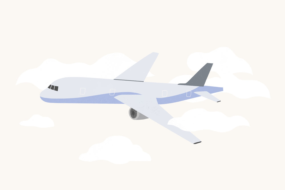 coney_plane.jpg