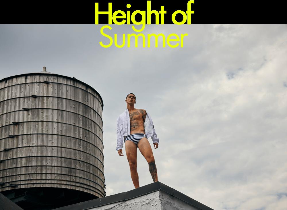 HeightofSummer-HeroNew (1).png