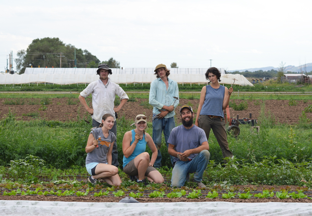 Native Hill Farmers workin' hard to feed you! (Photo by Claire Burnett)