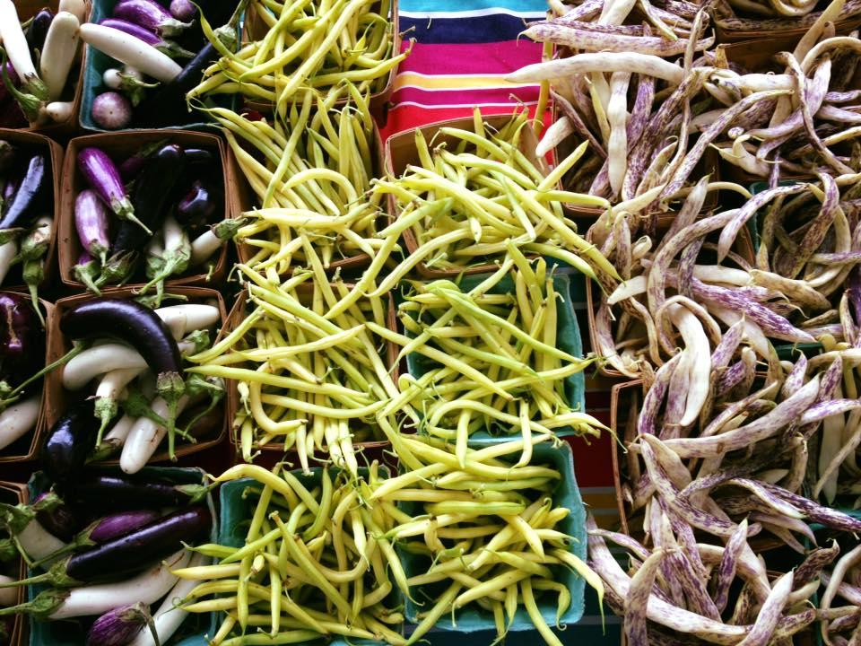 native-hill-farm-beans.jpg