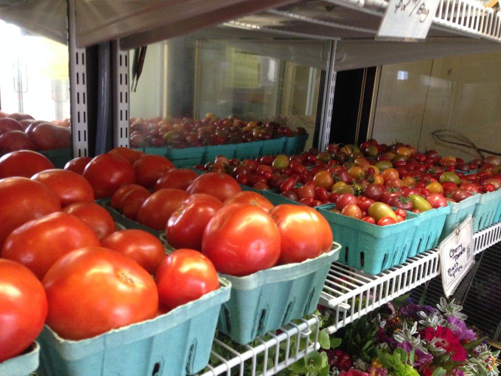 native-hill-tomatoes.JPG