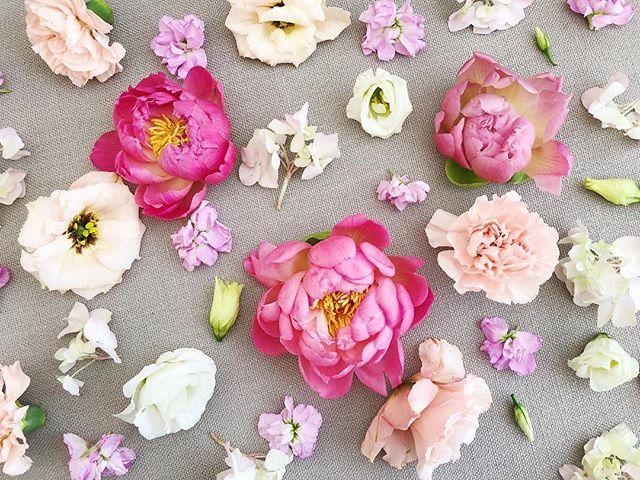 about last weekend. couldn't be a more perfect way to welcome spring! #peonyforpresident #flowertetris  #bloomdallas #bloom #thedallascoterie #coterie #dallasweddings #dallastx #dallasflorist #bishoparts #oakcliff #girlgang #girlboss #weddingday #weddinginspiration #bride #engaged #stylemepretty #ruffledblooms #ruffledworthy #livefolk #kinfolk #thatsdarling #ohwowyes #pursuepretty #bloomcolorfully #flowerlibrary #floweroftheday #flowerporn #flowerstagram