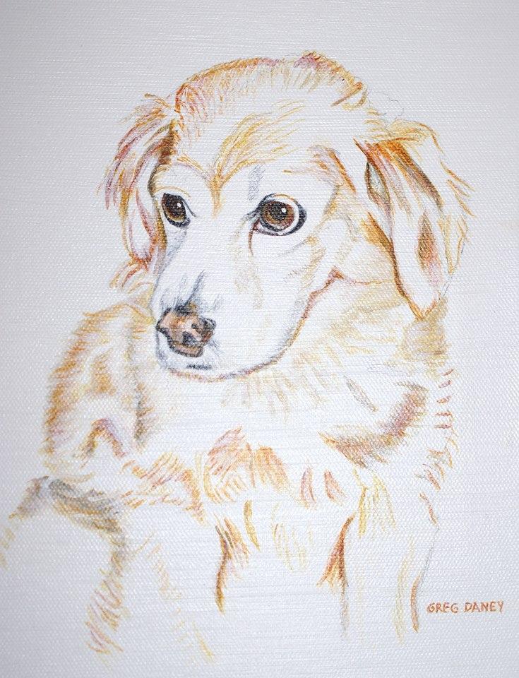 Jim and Diane's Dog.jpg