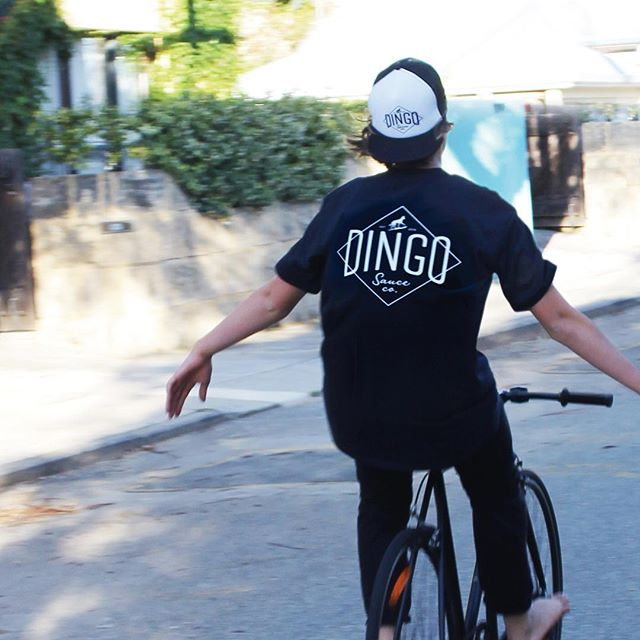New @dingo_sauce_co merch designed by us, now on the streets! This randomly spotted law-breaker absolutely no relation to anyone at insomnia design. . Limited edition shirts and caps while stocks last, hit 'em up. . . . #insomniadesign #design #branding #localmaker #hotsauce #dingosauceco