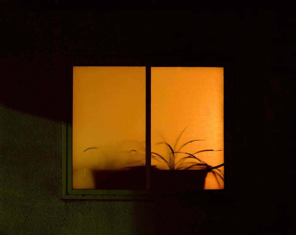 Color Nights_03.jpg