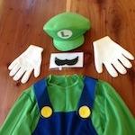 Luigi Adult Costume