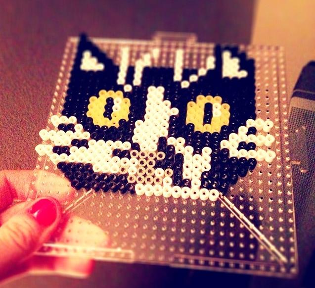 yerdle - pearl cat