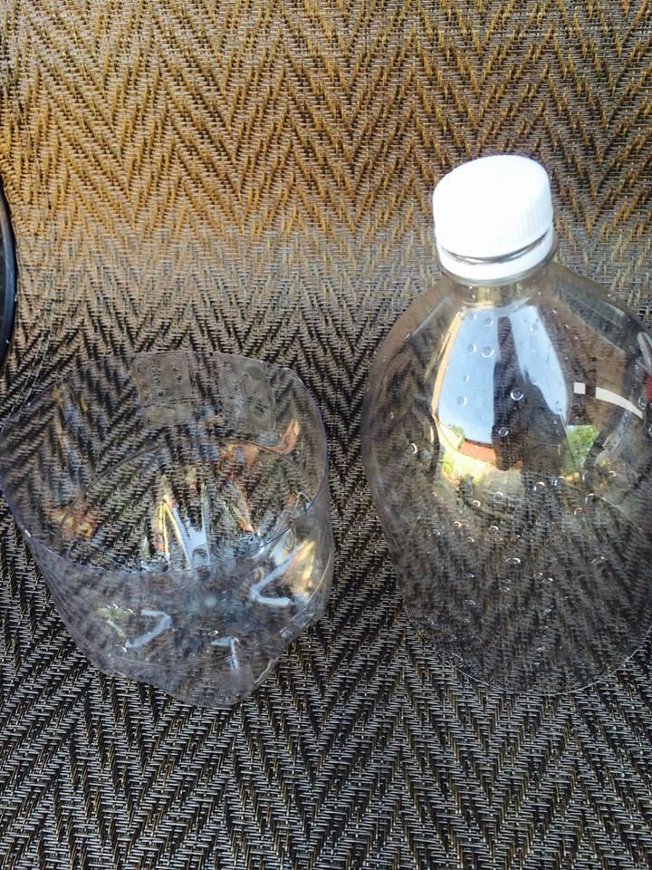 cut bottle
