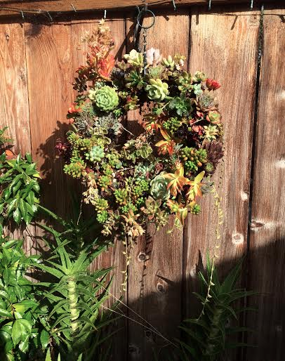 Wreath with succulents