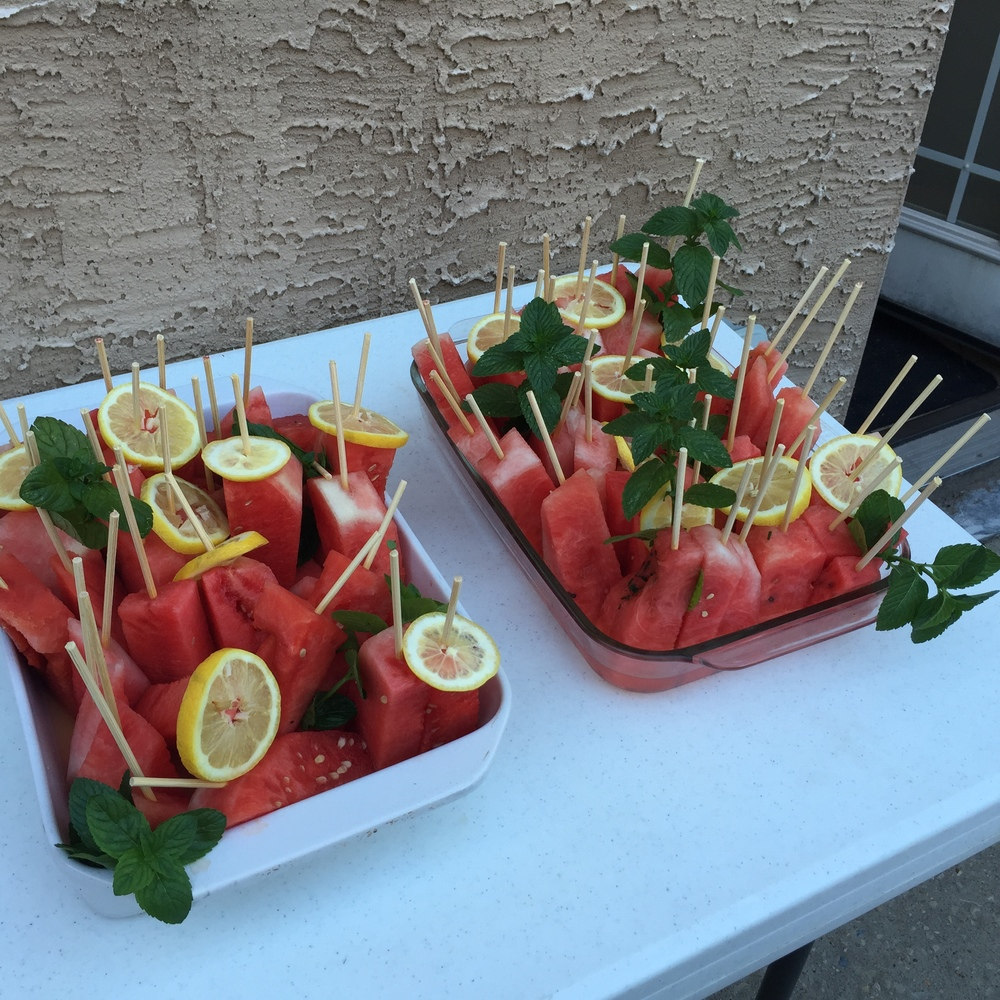 boozy watermelon trays