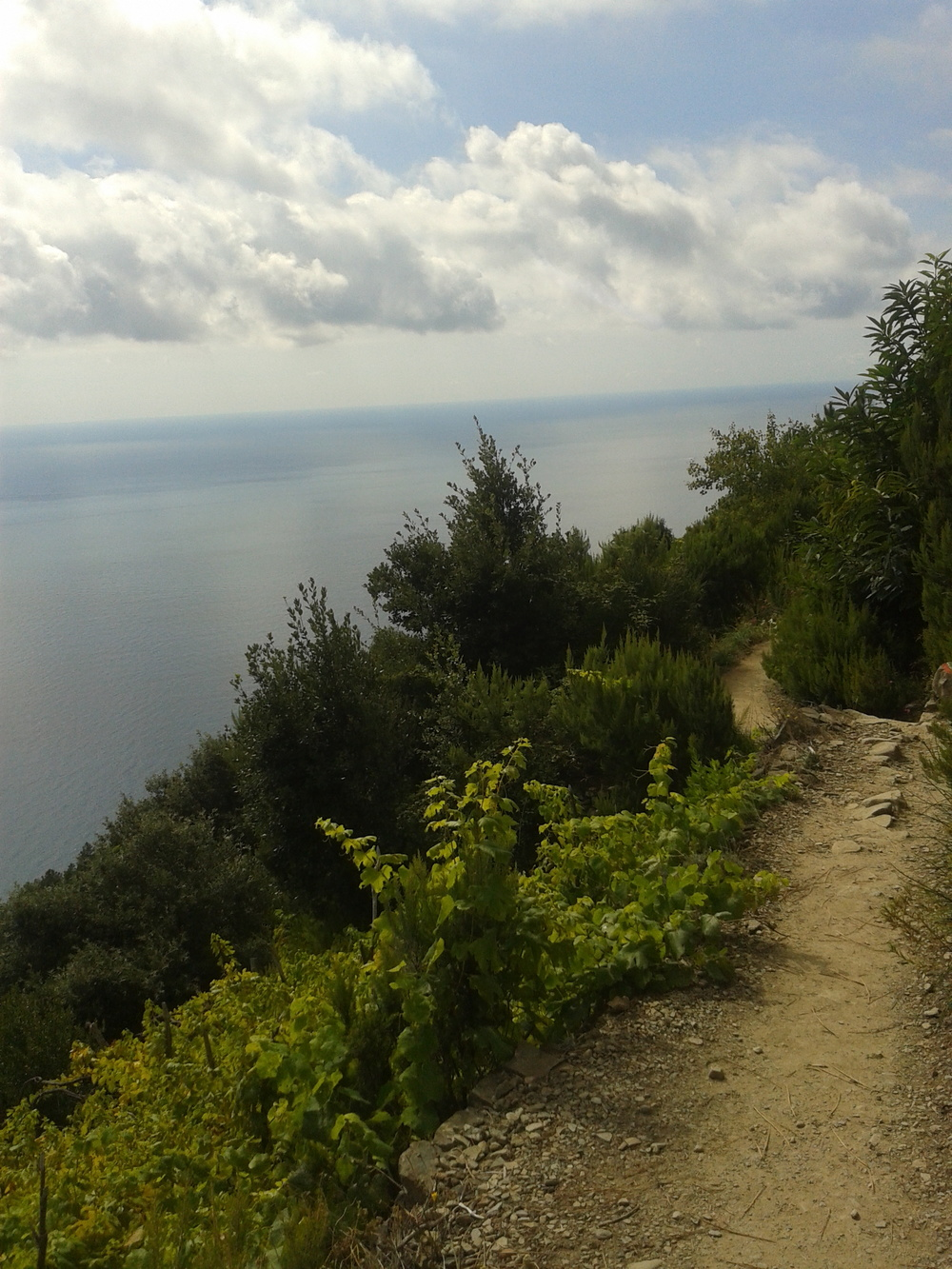 Trail to Corniglia
