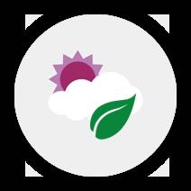 Klima og planter