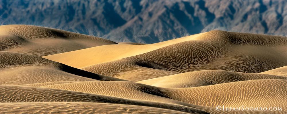 Desert---2.jpg