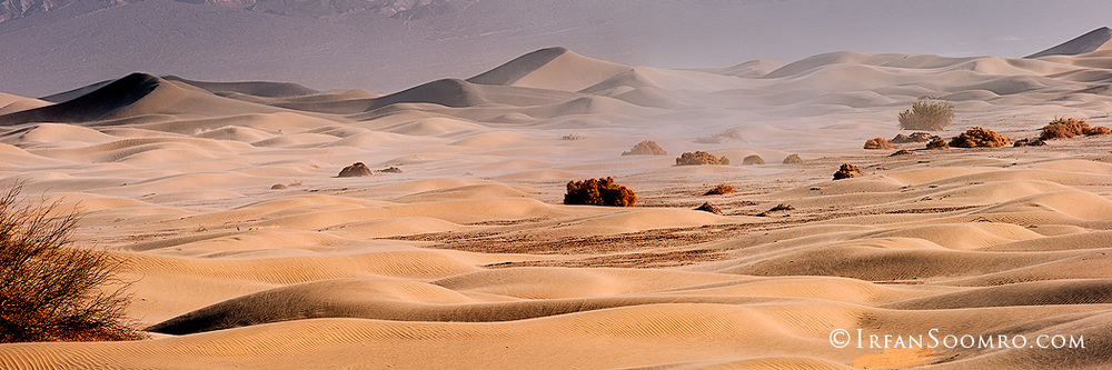 Sandstorm - Panorama