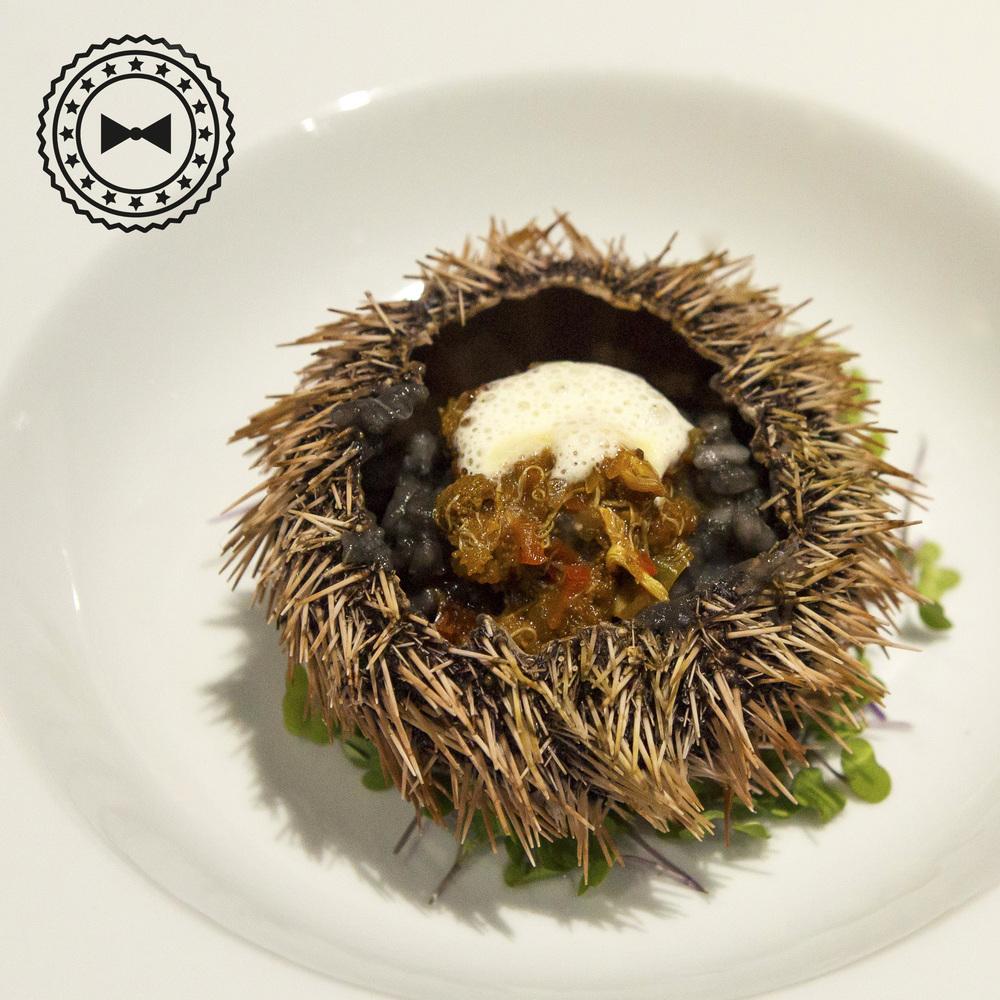 Salmorejo de erizo sobre risotto de tinta de calamres y espuma de queso parmesano, exclusivo de HOPS, por Comida Vinoteca.