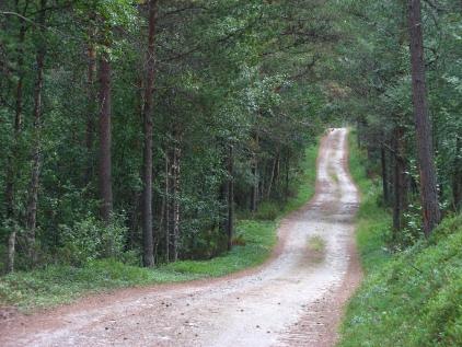 Røros - på vei mot mølmannsdalen.