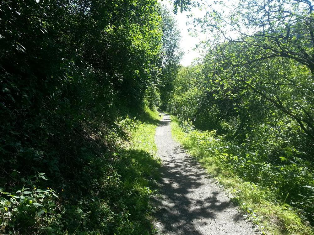 Fra Tempe til Sluppen går det en smal, gruslagt sti langs Nidelva.
