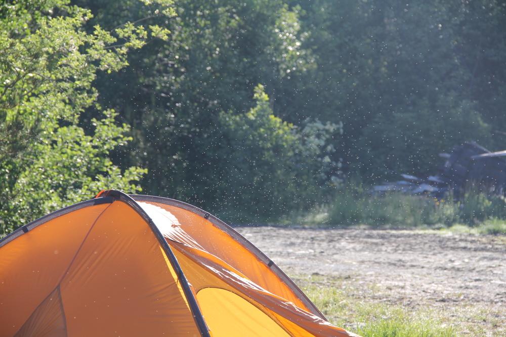 Her blei jeg kjeppjaga av en halv million små insekter. Turens mest spesielle morgen til nå.