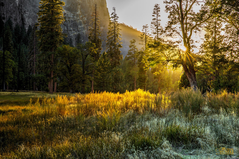 Yosemite_Sunset_Meadow_1 2000 wide 72dpi high(9) wm.jpg