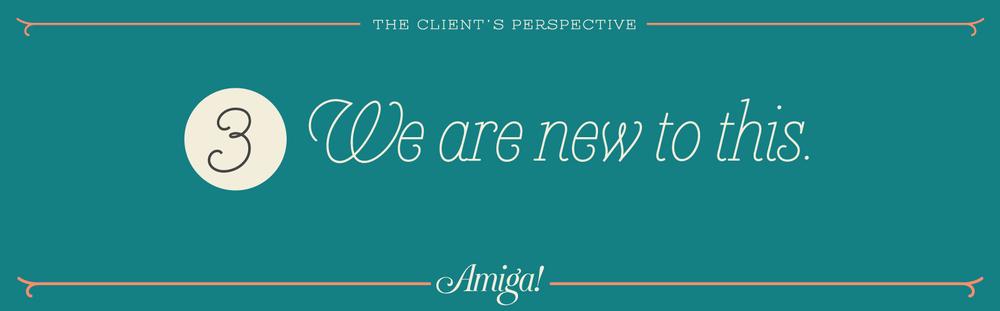Amiga_clientPerspective_working3.jpg