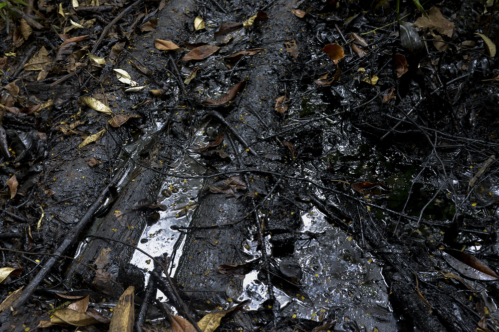ECUADOR, Lago Agrio. December, 2015.  A crude oil waste pit left by Texaco (now Chevron) at the end of its oil concession in Ecuador in 1992. A survey ordered by an Ecuadorian court established that more than 900 oil waste pits were constructed by Texaco whilst operating in the region.