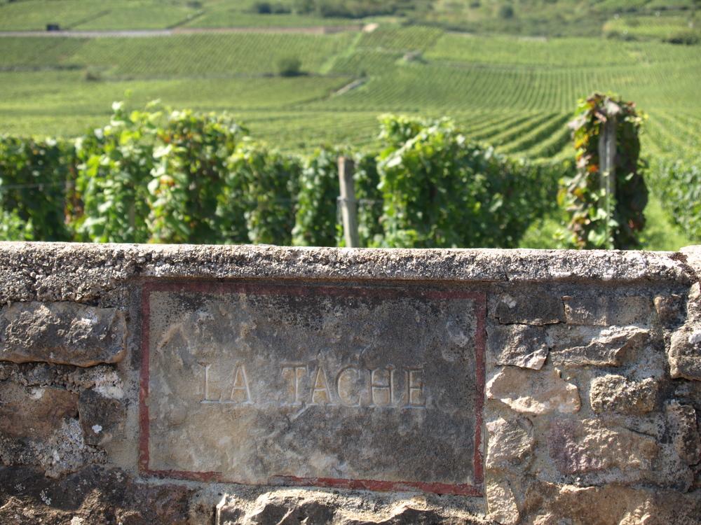La Tache - Burgundy