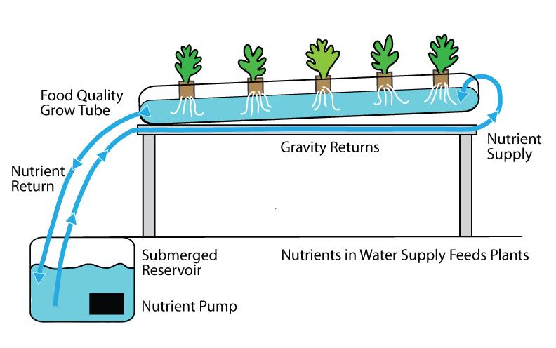 Basic hydroponic operation system set up.