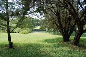 jerrys-river-property.jpg