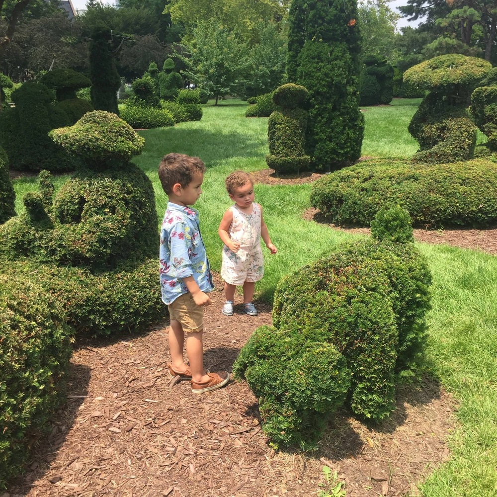 Of course the dog shaped bush was the most intriguing for these two.