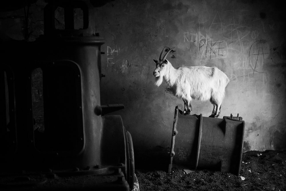The Boiler Room | Highly Commended | BWPA Awards 2018 Book and Exhibition - Black & White Category
