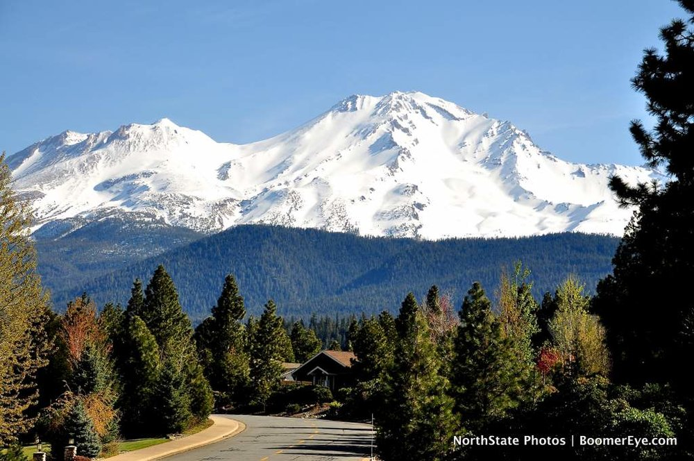Mt. Shasta Neighborhood by Mary Lascelles DSC_0022.jpg