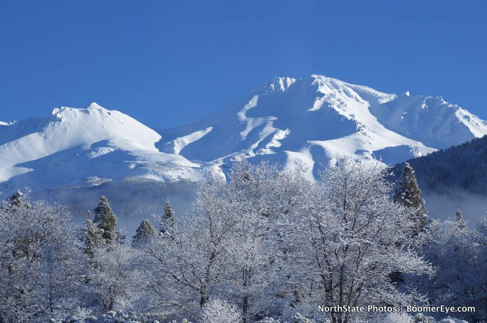 Mt. Shasta's Winter White #2 - by Mary Lascelles DSC_0106.jpg