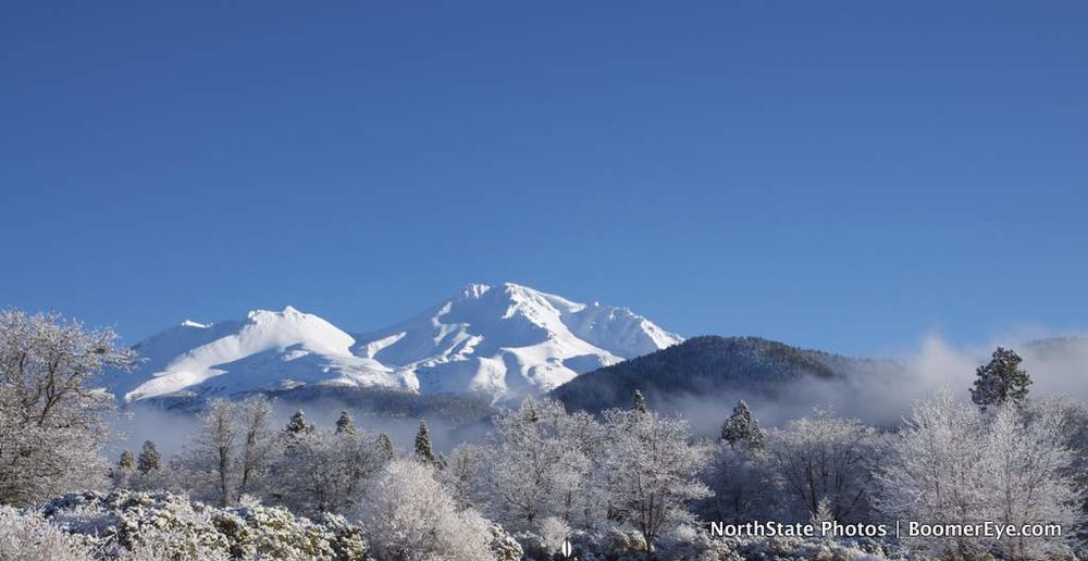 Mt. Shasta Winter - Panoramic - by Mary Lascelles DSC_0101.jpg