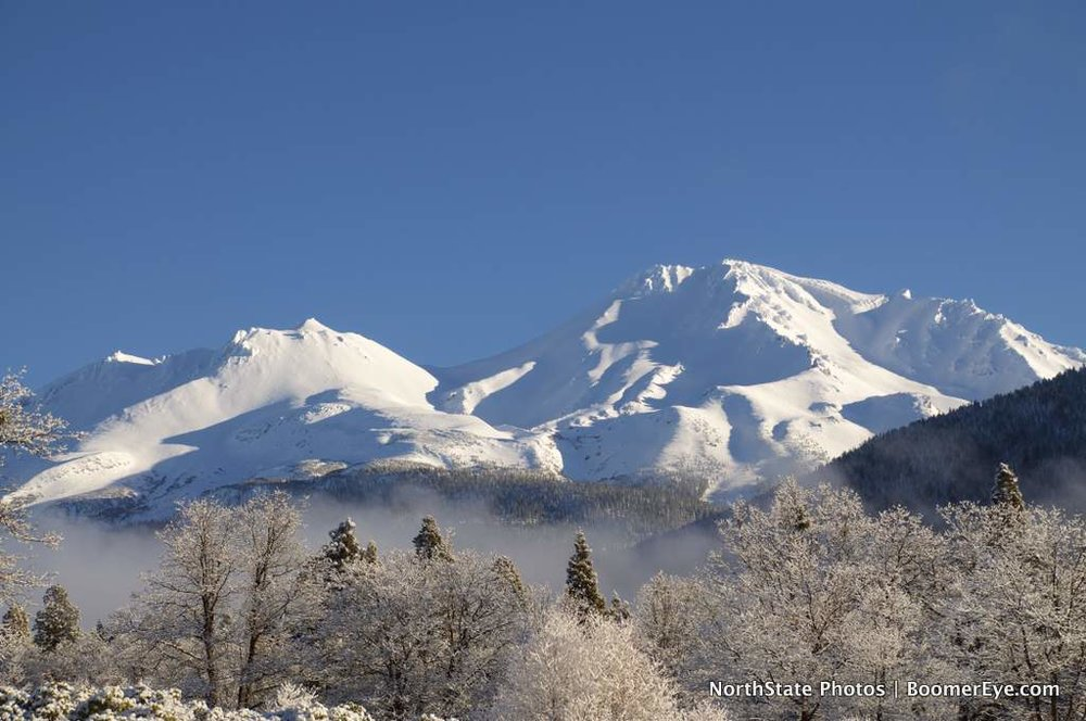 Mt. Shasta's Winter White by Mary Lascelles DSC_0099.jpg