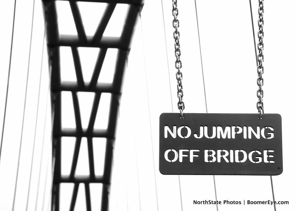 No Jumping Off Bridge by Mary Lascelles DSC_0036.jpg