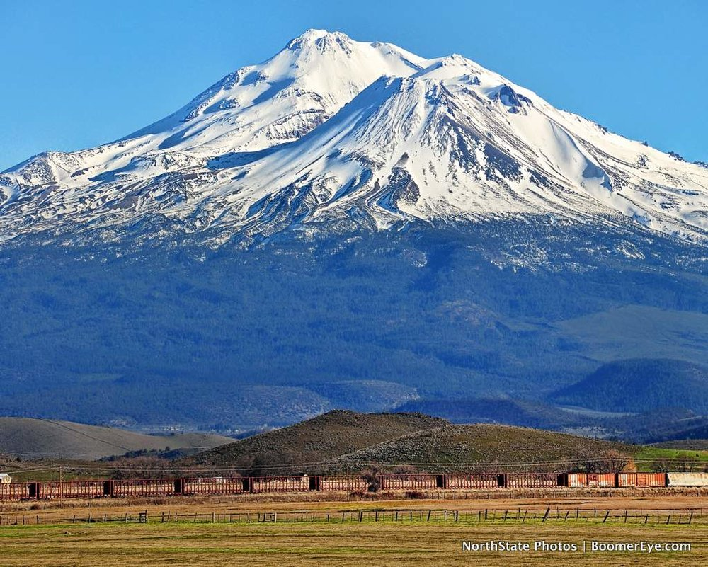 Train & Mt. Shasta by Mary Lascellesjpg.jpg