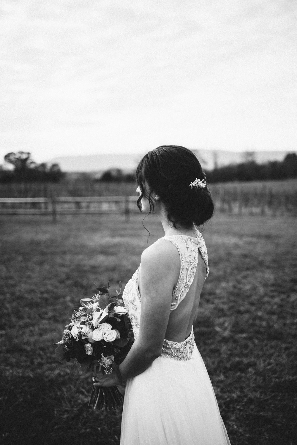 Alyssa and Jesse Winter Vineyard Wedding Luray Virginia Shenandoah Valley Faithbrooke_42.JPG