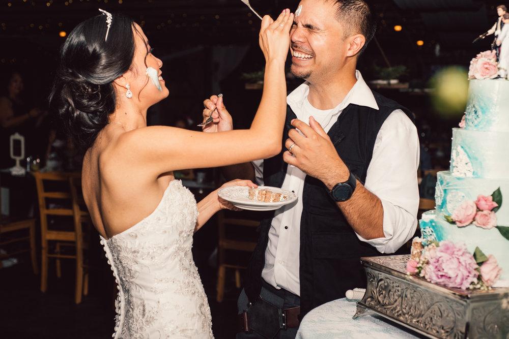 White Sails Photography Wedding Reception Photos Luray Virginia_21.JPG