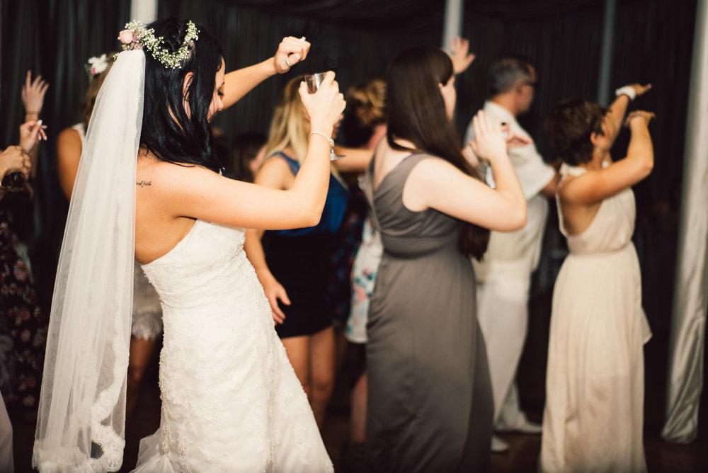 White Sails Photography Wedding Reception Photos Luray Virginia_24.JPG