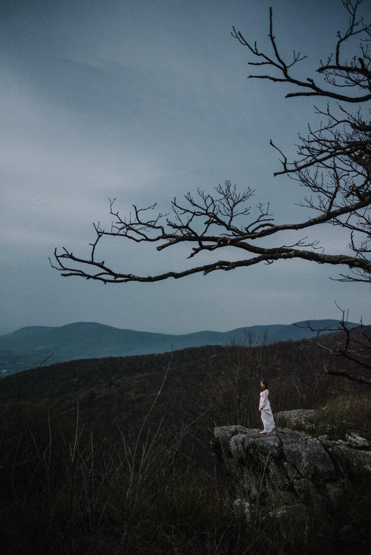 Lisa and Stuart - Post Wedding Couple Portraits - White Sails Creative - Blue Ridge Mountains - Sunrise Shenandoah National Park_23.JPG
