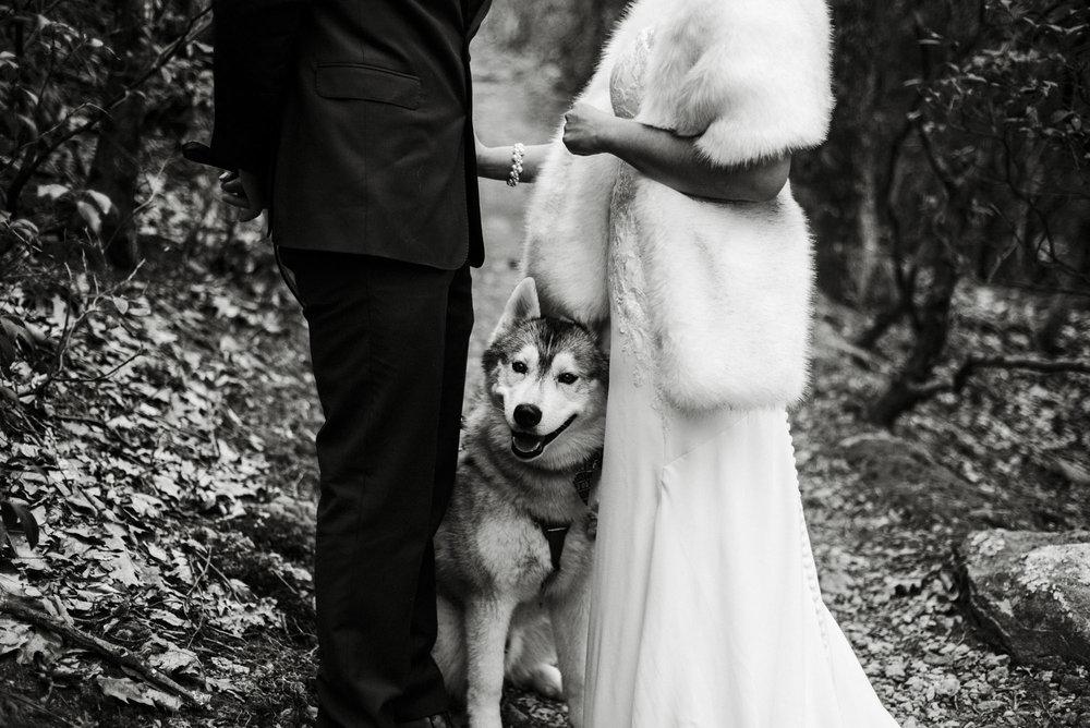Game of Thrones Elopement - Winter Elopement - Shenandoah National Park Elopement Photographer - Virginia Adventure Photographer - Blue Ridge Parkway Elopement Photographer_9.jpg