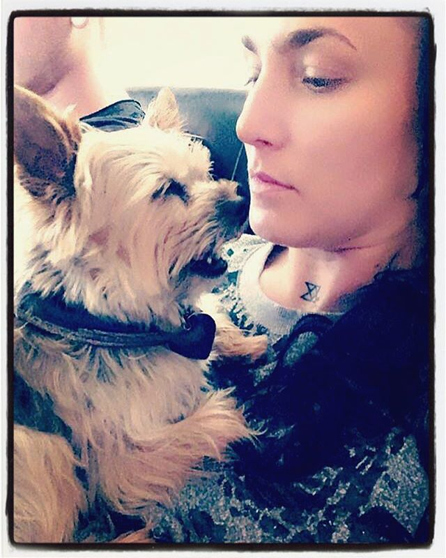 Our manager is soooo tired. Probably from continuing to use the excuse that she can't book us a tour with her puppy paws🙄 #bestfriendshit #musicians #yorkiesofinstagram @dalithegoodgirl @ryanxriot